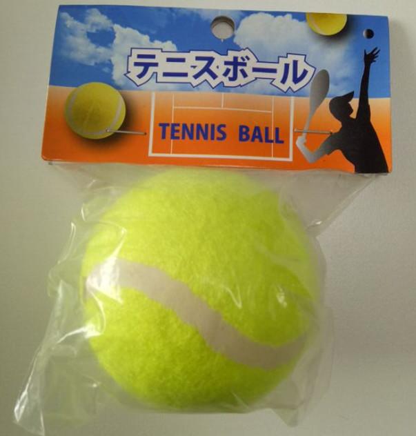 网球2 (1).jpg