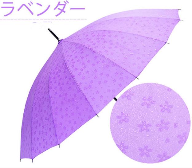铁棒樱花3.png